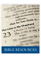 Supportive Scriptural Blog Articles